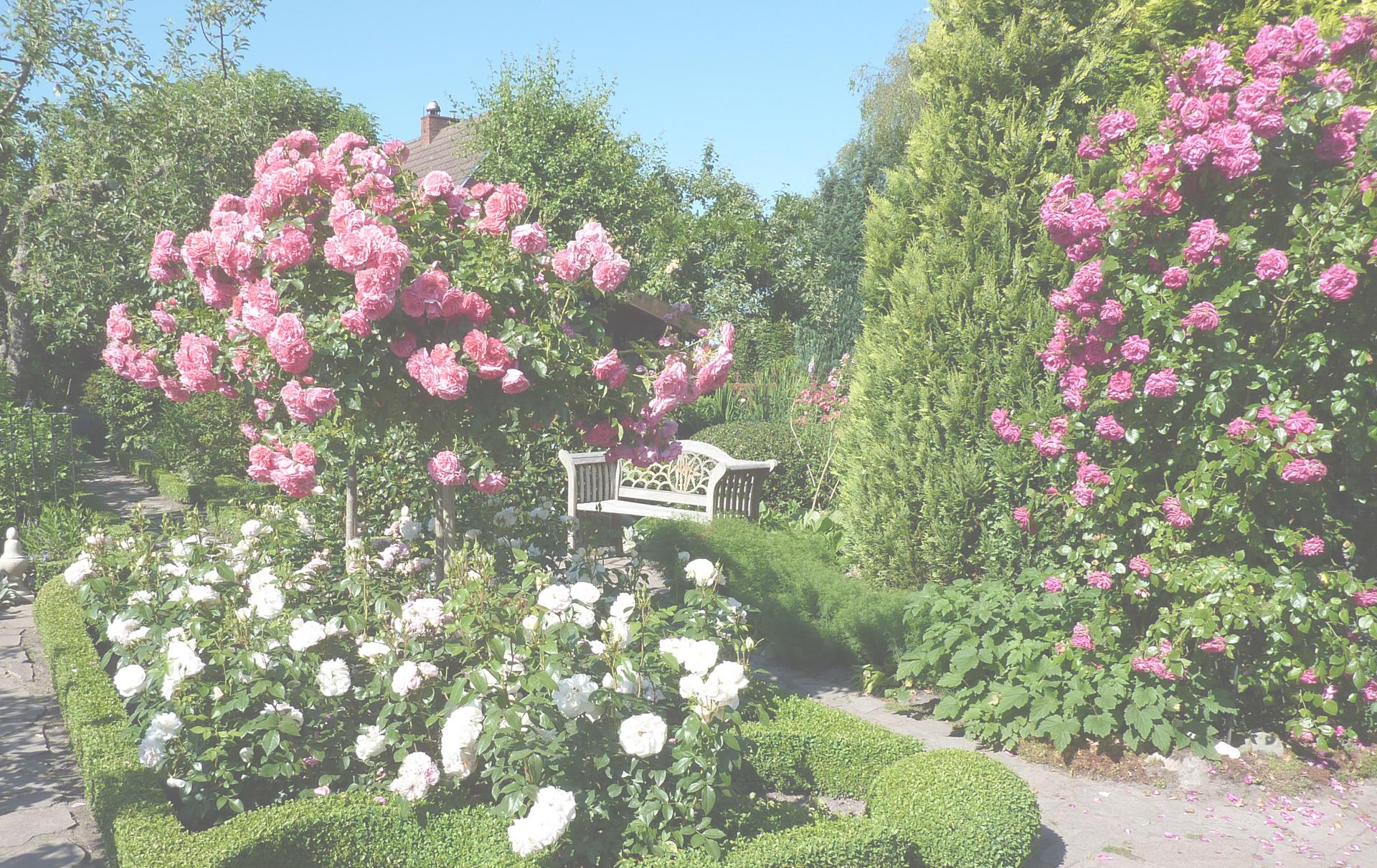 bg gr - Garten Der Sinne